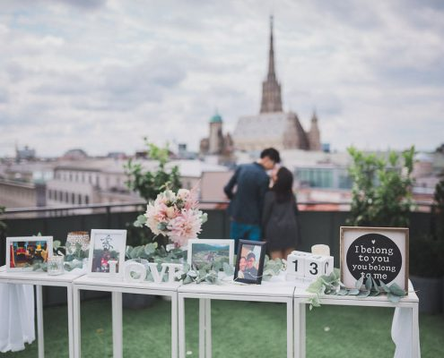 Rooftop Proposal Vienna